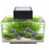 Fluval EDGE Aquarium For sale In Malaysia