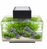 Fluval Edge 6 Gallon LED Aquarium