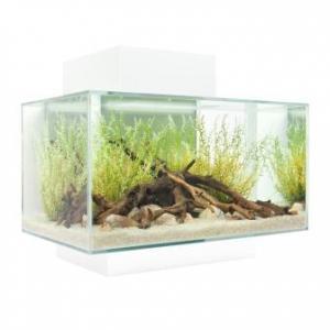 Fluval EDGE Aquarium For sale In Malaysia