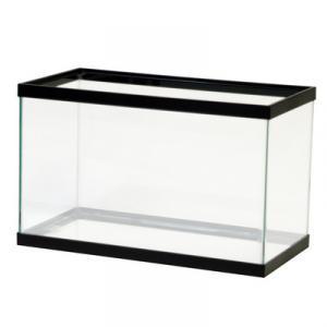 2 feet glass aquarium