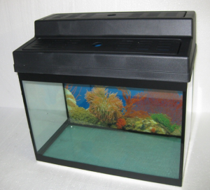 2 Feet Aquarium Set With Metal Stand